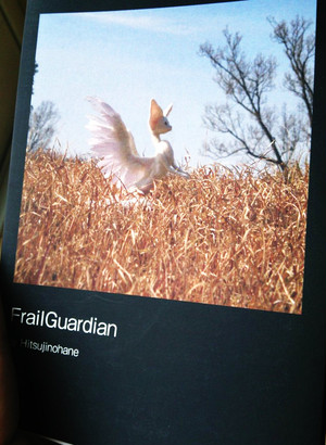 Frail Guardian 写真集
