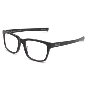 BlackFlys【FLY HADLEY】(PHOTOCHROMIC)