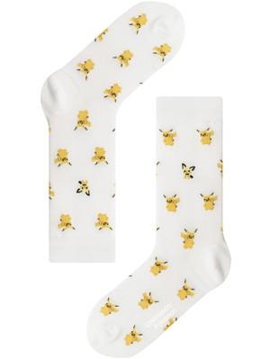※再入荷未定【Pocket Monsters socksappeal】Pikachu & Pichu│【ポケットモンスターソックスアピール】ピカチュウ & ピチュー