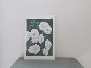 miyagi natsuki rose