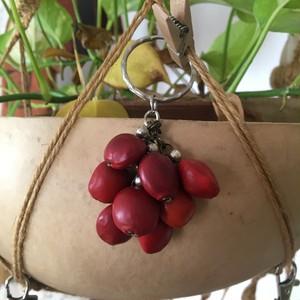 木の実 キーフォルダー ワイルーロ アマゾンの宝石