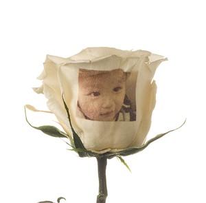 【写真プリントフラワー】花びらに写真をプリントするお花のギフト