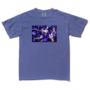 藍_フォトTシャツ青(受注販売)