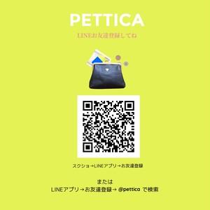 PETTICAのおはなしクラ ブvol.1  【紙モノのはなしをしよう】