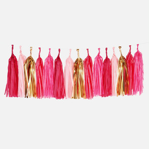 TASSEL GARLAND KIT(Pink)