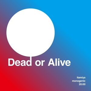 "Dead or Alive / ""Chaos"" itamiya monogenic sound wall 20:00 [Monogenic]"