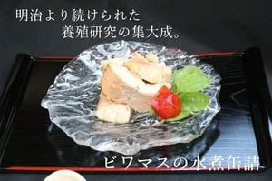 琵琶湖固有種 養殖 びわますの水煮缶詰