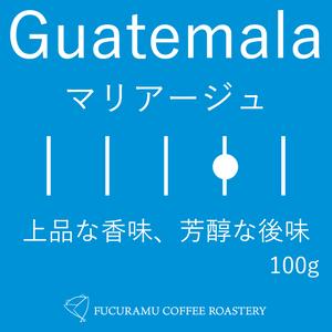 グァテマラ マリアージュ【フルシティ】100g