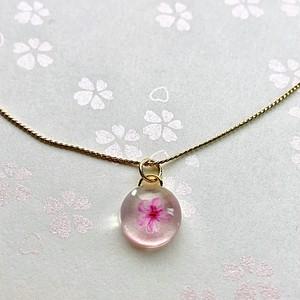 一粒桜ゴールドネックレス 中 One middle Sakura gold necklace