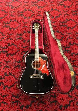 "Gibson DOVE  ""EbonyBlack"" 1975"