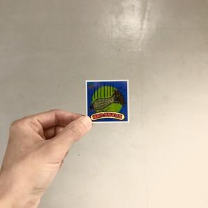 botanical sticker/根腐れグラキリス
