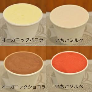 パティシエ特製アイス  いろいろ4個セット