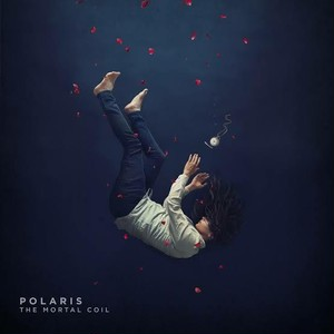 [LP] POLARIS/The Mortal Coil