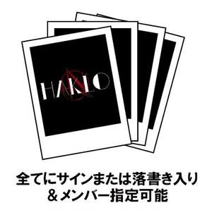 メンバー指定チェキ4枚SET(アナタのお名前入り!!)