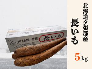 【期間限定】北海道夕張産長芋5kg