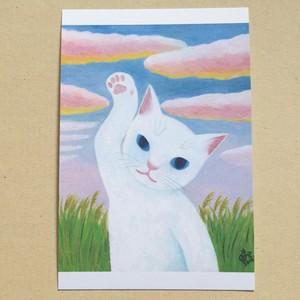 ポストカード/夕焼け雲