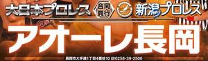 2018年6月8日 大日本プロレス&新潟プロレス 合同興行 アオーレ長岡大会 指定席
