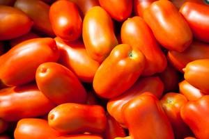 「サンマルツァーノ・リゼルバ」3kg イタリアントマト