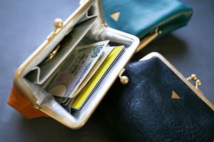 mini   ウォレット/がまぐち財布 パイソン型押し