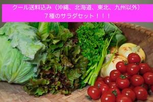 クール便発送!!野菜7種セット税込送料込み沖縄、北海道、九州、東北以外