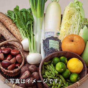 健康王国・鳥取秋野菜セット 限定10セット(6~8種類)