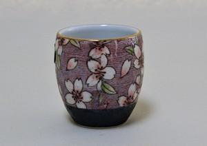 茶湯器 有田焼