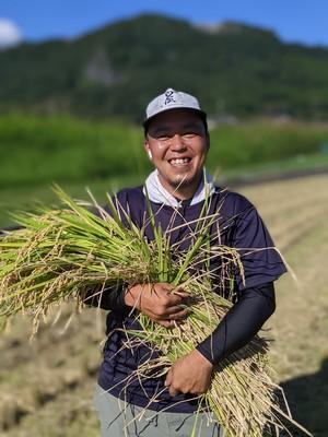 新米 !! 大自然米【10kg】無洗米