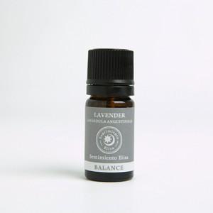 ラベンダー10ml Lavandula officinalis/Lavandula vera/Lavandula anfustifolia