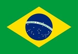 2018年11月限定 ブラジル完熟 豆 100g
