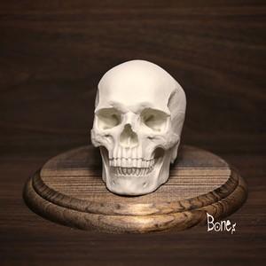 ドクロ インテリアコロル  Bones