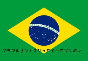 ストレート生豆【ブラジルサントスジュヌイーヌブルボン】100g(送料込み)