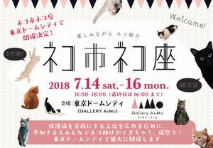 子猫ブース1日間【ネコ市ネコ座@東京ドームシティ 来場出店者様専用】