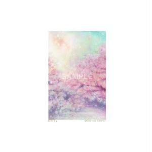 【選べるポストカード3枚セット】No.159 sakura