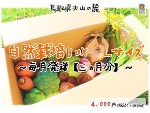 【毎月発送~三ヵ月分~】自然栽培Box Lサイズ