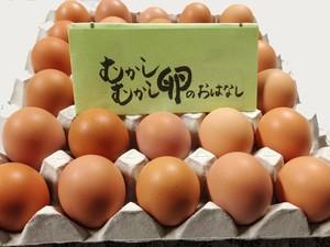 平飼い卵 麦畑自然農場の「むかしむかし卵」 30個 国産飼料 オーガニック
