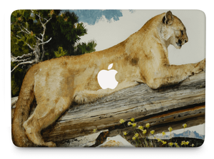 MacBook Design 156