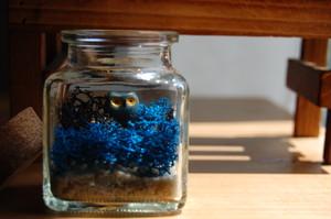 小鳥の苔テラリウム(レインディアモス) ちょっと怖いテラリウム