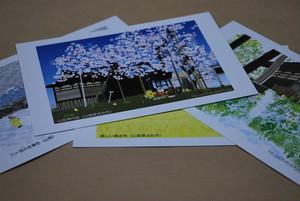 絵葉書 『北杜の四季』4枚セット ~グラフィックアートTiki&Puffyシリーズ~ 【清春旅と空想の美術館】