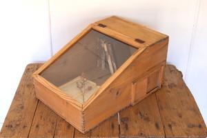 斜めガラスの木製ディスプレイケース