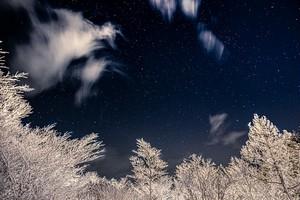 霧氷と星空
