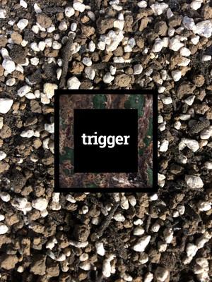 trigger観葉植物土 2L