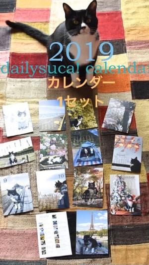 《カレンダー》1セット*dailysuca!  calendar! 2019*