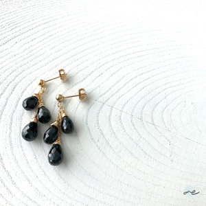 Black Spinel Earrings/14KGF