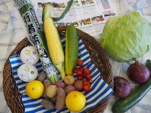 【NEW】ベジバルーンセット7月(文月)『大暑すぎて 夏盛りエネルギー溢れる野菜たち』