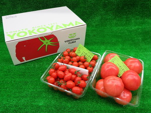 ミニトマトMIX1.5kg + ファーストトマト2kg入り