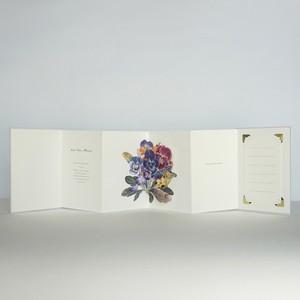 "gift book ""Viola"""