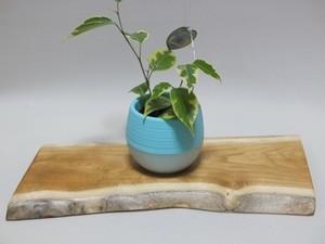 天然木の花台・飾り台No.18 胡桃の天然木