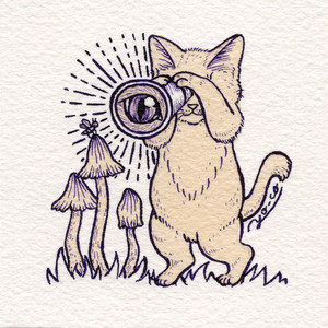 【YO-CO】原画 「キノコバエを観察する猫」