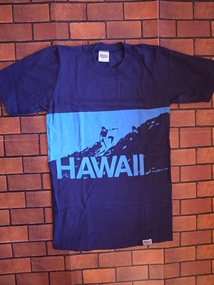 DEAD STOCK CRAZY SHIRTS 70'S HAWAII T-SHIRTS