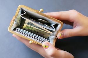 NEW  mini   ウォレット/がまぐち財布 プエブロシルバー×ピンク
